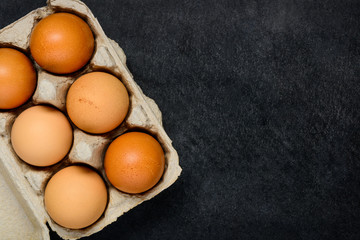 Chicken Eggs in Box with Copy Space