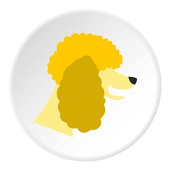 Poodle dog icon. Flat illustration of poodle dog vector icon for web