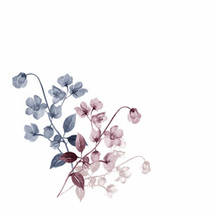 Watercolor flowers of rosemary on a colored background