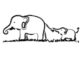 mom and baby elephants vector hand drawn illustration design