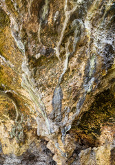 Texture of wet rock cliffs