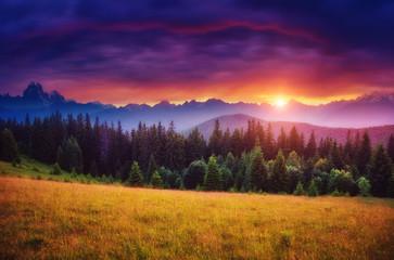 壁紙(ウォールミューラル) - Majestic colorful sunset