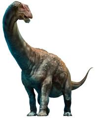 Wall Mural - Diamantinasaurus