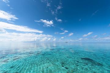モルディブ 海 海辺 珊瑚礁