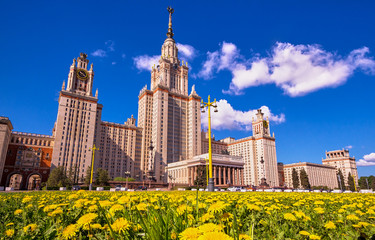 Wide angle view of sunny yellow dandelions near Moscow university in spring