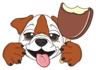 dog, animal, pet, puppy, cartoon, white, brown, bulldog, english, english bulldog, England, British, muzzle, face, tongue, hold, ice cream