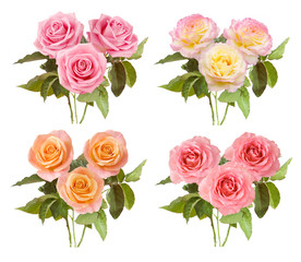 roses bunch set isolated on white background