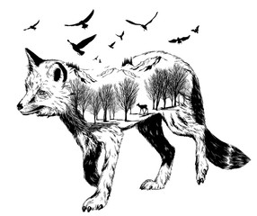 Vector Double exposure, silhouette of fox