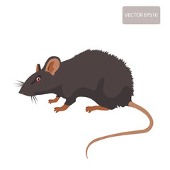 Mouse, Rat Vector. Rat Isolated On White Background. Rat Vector Disease. Harmful Rodent, Parasite.
