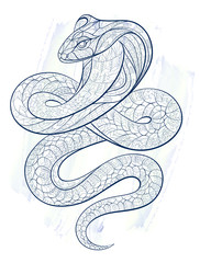Patterned snake cobra on the grunge background.