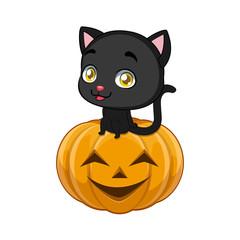 Cute black cat sitting comfortably on a Halloween pumpkin