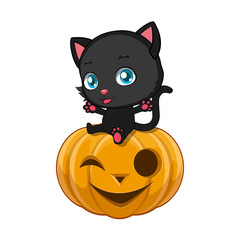 Cute black cat sitting on a Halloween pumpkin
