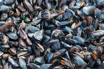 mussels background. street food
