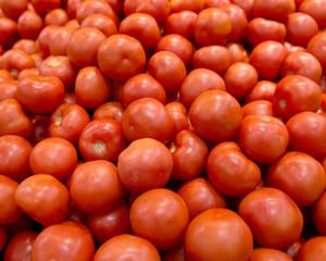 Ripe organic tomato on shelf in local farmers store