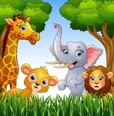 Cartoon collection animals in the jungle