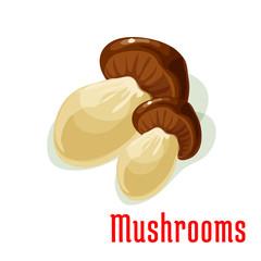 Boletus or porcini edible mushroom cartoon icon