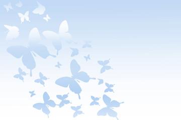 Butterflies flying in the sky