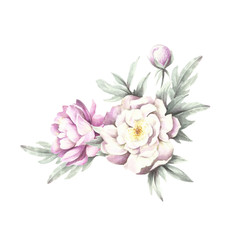 Bouquet of peonies. Hand draw watercolor illustration.