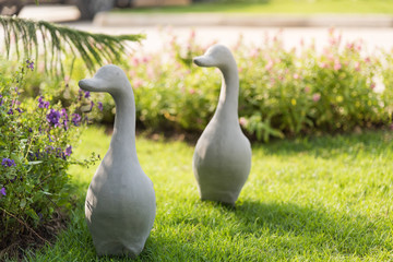 Group of duck statue.