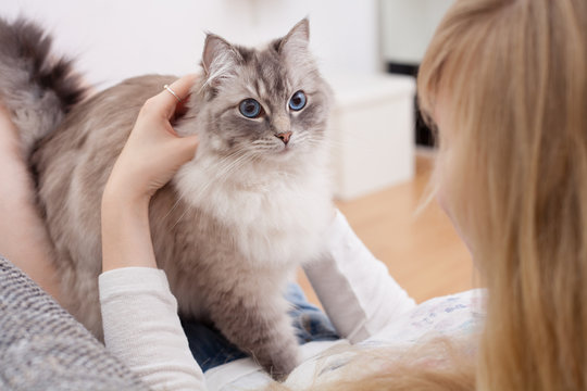 young woman with ragdoll cat on couch