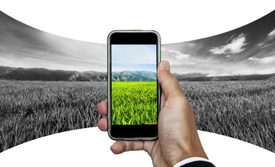 Businessman hand taking panorama photo of rice field in sunrise. isolated on white background