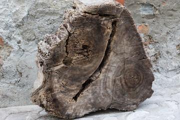 Il tronco affettato