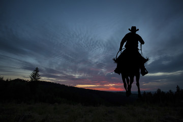 Cowboy on a horse Wall mural