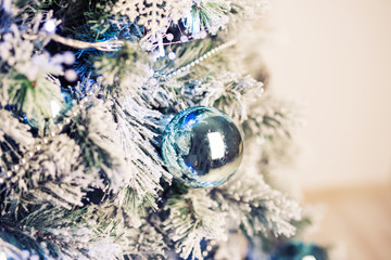 Close up Decorated fir tree