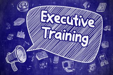 Executive Training - Doodle Illustration on Blue Chalkboard.