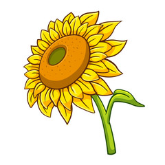 Sunflower cartoon style