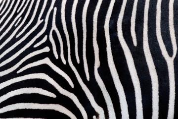 Aluminium Prints Zebra Zebra texturae pattern