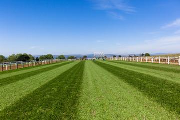 Race Horse Training Track