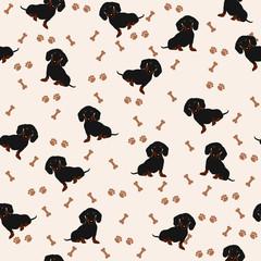 Dogs Dachshund Vector Seamless pattern. Dog Dachshund, bone, paw print.