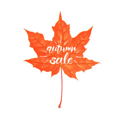 Hand drawn lettering of a phrase Autumn Sale. Vector illustration isolated on white. Shape of maple leaf.
