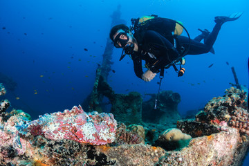 Diver with stonefish at shipwreck