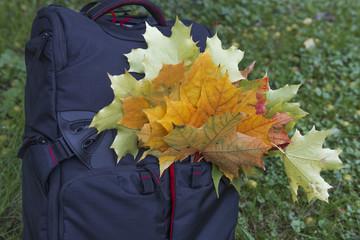Рюкзак полный осенних листьев