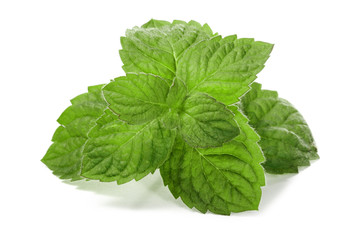Wall Mural - Fresh mint leaves isolated on white background