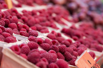 Fresh raspberries in boxes on sale
