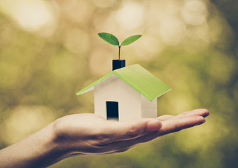 Hand holding a small green house with a young green plant growing on the roof / Ecohouse concept Wall mural