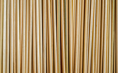 Bamboo sticks background. Green shadow. Vertically arranged. Suitable for use in projects on imagination and creativity