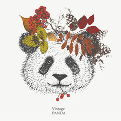 vector vintage Panda with wreath of autumn leaves