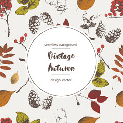 vector vintage background from autumn leaves, cones, berries