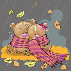 Two bears in a scarf