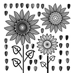 vector  black and white sunflowers and seeds