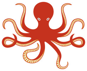 octopus and tentacles