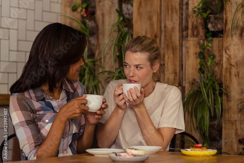 """Female friends interacting with each other while having ..."