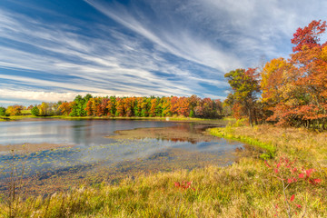 Autumn Lake in the American Midwest