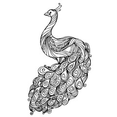 Vintage hand drawn pattern black and white doodle peacock. design. Sketch