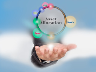 Investment Portfolio ansd asset allocation concept with icons o