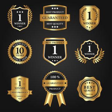 Mega Set and Big Group, Award Shield and Luxury Emblem Vector Design